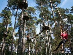 Klettern im Abenteuerwald macht Spaß